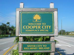 SEO Cooper City DIY SEO Search Engine Optimization and DIY Web Site Design 2